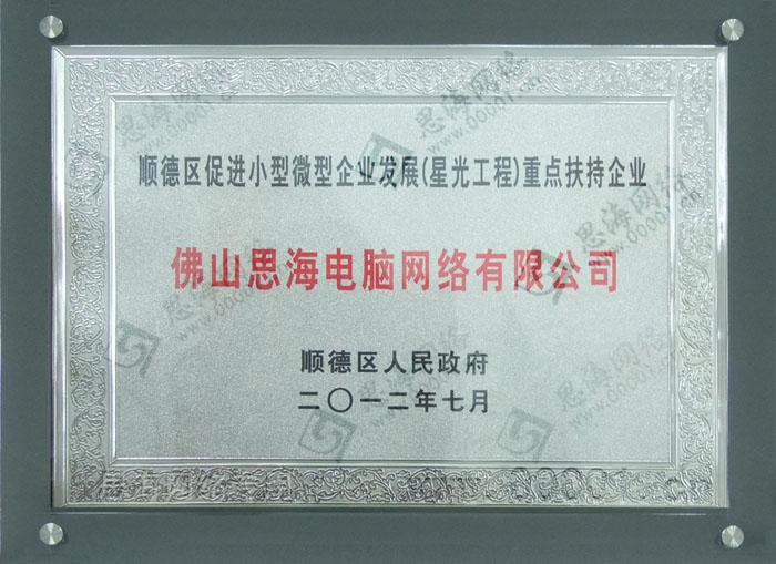 顺德政府重点扶持企业证书